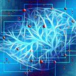 Zwei High-Potential Projekte zu künstlicher Intelligenz